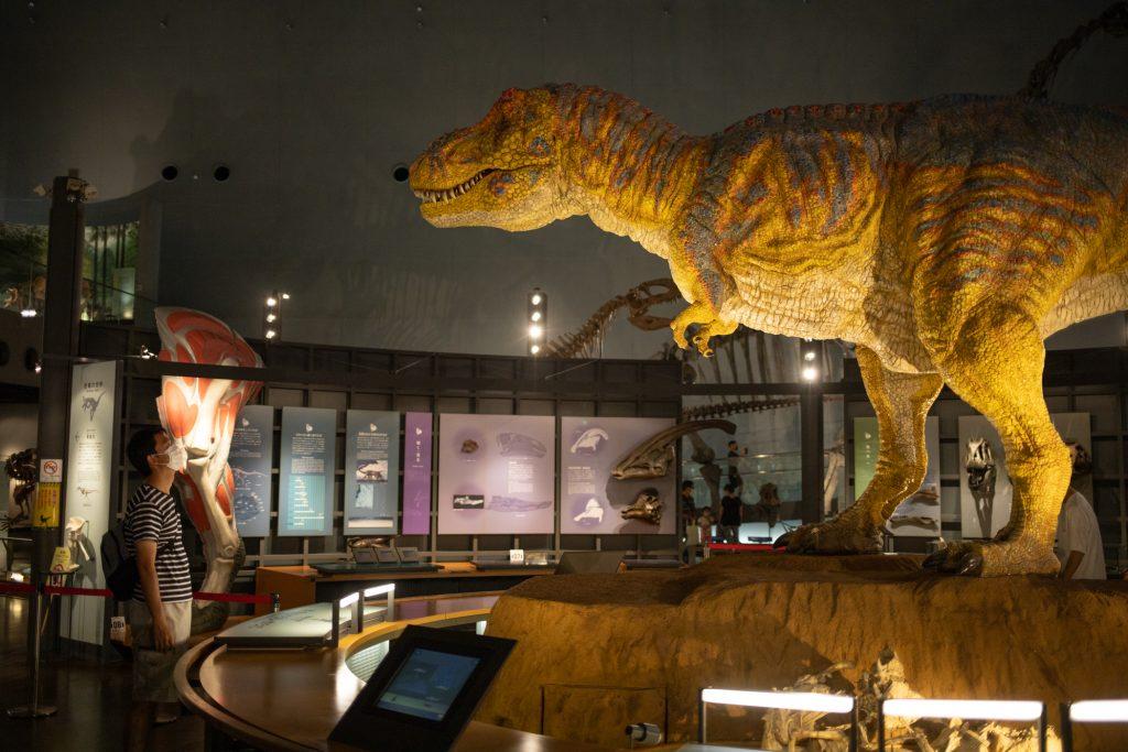 恐竜博物館の恐竜オブジェ